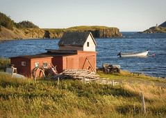Port Rexton (Raphael Borja) Tags: ocean lighthouse water rural canon newfoundland boat dock shed cliffs atlantic ef50mmf14 wharf shack portrexton trinitybay 40d newfoundlandia