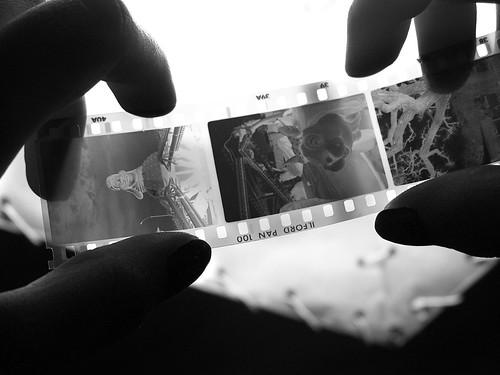 Hasil gambar untuk cuci cetak film kamera