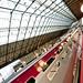 Gare du Nord x Thalys x XXXX