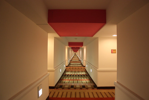 Hallway at the Flamingo Hotel