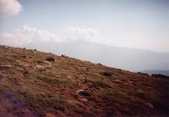 44 (Prebral) Tags: rila argo bulharsko
