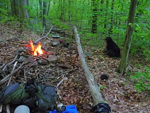 donovan goes camping