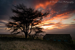 The Sky On Fire (.Brian Kerr Photography.) Tags: sunrise fire winter cumbria photography