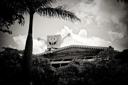Don't Jump Sponge Bob