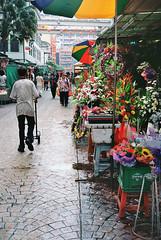 Flower Alley (khai_nomore) Tags: life film 35mm fast stealth f8 kodakportra160vc rf rm aperturepriority yashicaelectro35gtn autaut coloryashinondx45mmf17 funnysad