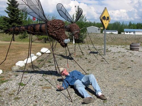 john mosquito