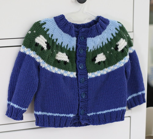 Sheep Yoke Cardigan