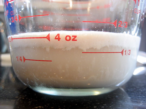 proofed yeast