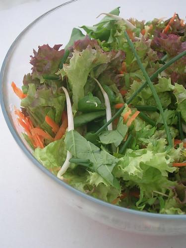 Soya Filizli Karışık Salata