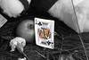 Gary, Indiana (Mickey B. Photography) Tags: music black death michael dance memorial nw king northwest 5 five mj indiana jackson singer michaeljackson thejacksonfive gary tribute 2009 kingofpop lakecounty songwriter thriller in beatit thejackson5 thegreatestofalltime 19582009