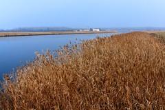 Canale - Brussa Valle Vecchia (nelventredellabalena) Tags: laguna venezia canale friuli veneto caorle brussa vallevecchia nelventredellabalena