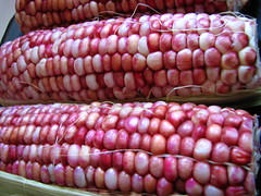red corn on the cob