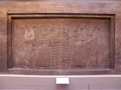 BM_ANE289 (sipazigaltumu) Tags: london museum ancient near antique east bm british mesopotamia basrelief reliefs assyrian antiquit ashurnasirpal antiquite ashurbanipal assurbanipal orthostat assurnasirpal orthostate tiglathpilesar tiglatpilesar tiglatpileser