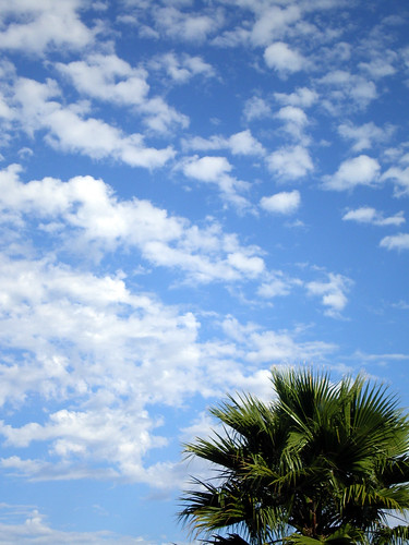 San Diego Sky