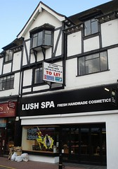 Picture of Lush, Kingston