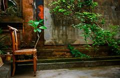 waiting ... (ion-bogdan dumitrescu) Tags: wood red bali plants green wall court garden indonesia grey wooden chair waiting sitting courtyard sit wait bitzi summer09 mg7954 ibdp findgetty ibdpro wwwibdpro ionbogdandumitrescuphotography