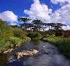 Parque Nacional dos Aparados da Serra - RS (Fernando Top) Tags: parque brazil rio brasil canon grande do top vale fernando serra nacional sfc sul itaimbezinho cânion aparados xti mainar vetorama