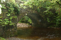 It rained all day (joysaphine) Tags: bridge trees summer cold water beautiful wales river energy whitewater flickr joy august fresh breconbeacons clean waterfalls raining 2009 tumbling roaring powys rushing gushing vitality fastflowing mywales pontmelinfach joysaphine nrystradfelte