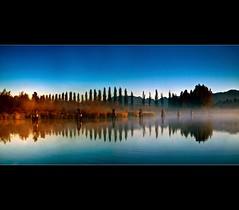 Looking backwards @ Burnaby Lake (Christopher J. Morley) Tags: trees canada reflection vancouver autumncolours morningmist northshoremountains burnabylake beautifulbritishcolumbia platinumheartaward saariysqualitypictures magicunicornverybest startingtoappear