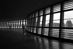 Ed. Viadutos (*Ολύμπιος*) Tags: arquitetura architecture foto sãopaulo architeture architettura artachojurado hccity
