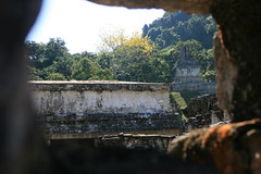 The Mighty Jungle (ytulauratambien) Tags: mexico mesoamerica ruins maya jungle mayanarchitecture temples palenque archeology chiapas basrelief roofcomb usumacintariver pacalthegreat tumbalámountains