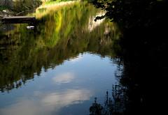 Natur im See (wolfgangp_vienna) Tags: blue autumn fall nature water austria waterfall österreich wasser herbst natur niederösterreich wandern stausee myrafälle loweraustria muggendorf