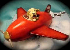 dog in plane cake (debbiedoescakes) Tags: sanfrancisco dog cake plane oakland tim mario bayarea debbiedoescakes sculptedcakes debbiegoard
