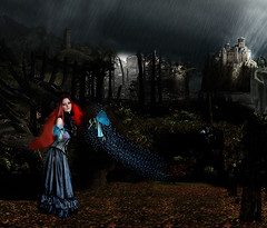 # Fantasy Fairies (Carlos Fachini ™) Tags: castle photoshop effects catholic imagens surreal manipulation fantasy photograph fantasia fairies fotografia vemelho manipulação fadas