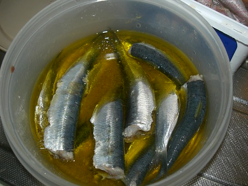 raw sardines in vinegar