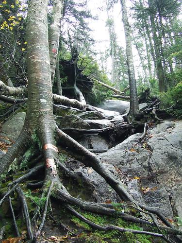Ampersand trail