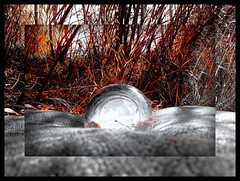 Resting in the Shade (mountainbeliever) Tags: nature beauty outdoors crystals pillow mystical reds magical accents picnik redandwhite crystalball camerasettings coloraccent onthepillow
