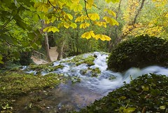 Fluyendo y modelando (Deckard73) Tags: water zaragoza monasteriodepiedra pentaxphotogallery kdds smcpentaxda141224
