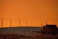 Cabo Polonio III (.meladepaula.) Tags: sunset beautiful uruguay atardecer sand peace natural paz arena campo hermoso cabopolonio rocha balneario tranquilidad