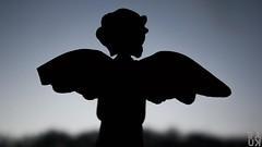 Broken angel (PaukSK) Tags: broken angel silhouette an with wing statuette canon m5 eos dusk