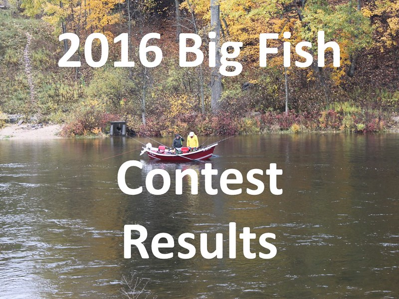 2016 Big Fish Awards Presentation