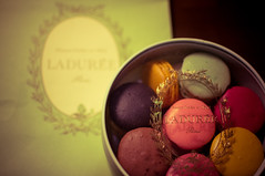 Ladure (Dennis&Grace) Tags: travel vacation food holiday paris france cookies french dessert cuisine nikon europe cookie macaroon pastry lightroom macaroons macarons macaron ptisserie d90 ladure nikond90 nikkor35mmf18g nikkor35mmf18gafsdx