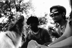 Olllliver. (stephaniesimonetti.) Tags: dog white black film me sunglasses by darkroom puppy picnic oliver voigtlander developed hc110developer