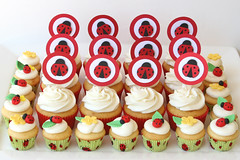 Ladybug Cupcakes (Glorious Treats) Tags: china red cupcakes mini ladybird ladybug toppers adoption fondant liners cupcaketoppers fondantladybug