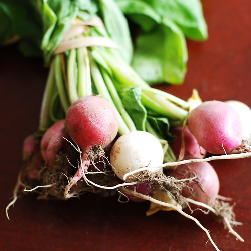 Easter egg radishes.