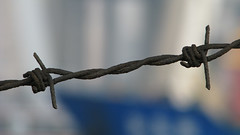 No Go (smittyfb86) Tags: china metal dangerous rust shanghai twist sharp barbedwire protect prohibit