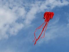 The Invasion (<Enrique />) Tags: kite beach june squid 2009 loyolabeach rogerspark enriquegonzalez lpsky