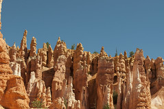 Hoodoos (Bryce Canyon, Utah, United States) Photo