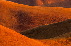 curves at sunrise (Marc Crumpler (Ilikethenight)) Tags: california morning usa grass sunrise canon landscape hiking curves trails hills bayarea eastbay antioch blackdiamond ebrpd blueribbonwinner contracostacounty eastbayregionalparkdistrict canon70300isusm 40d ebparks anawesomeshot theunforgettablepictures canon40d ebparksok