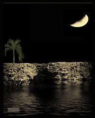 Rock wall moon (Peter Solano. Pursuing a dream!) Tags: moon art water night photoshop reflections catchycolors rocks arte creative explore movieposter palmtree myfave afiche 2010 magazinecover copyright otw portadaderevista canonpowershotsx10is trolledproud coloresllamativos
