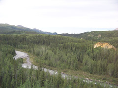 Denali to Anchorage