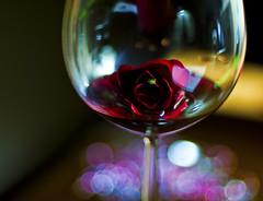 Sparkling Rose Wine (michaeljosh) Tags: love glass rose poetry wine bokeh sparkle explore wineglass frontpage nikkor50mmf14d rosewine project365 explored nikond90
