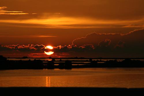 Golden Cedar Key Sunset