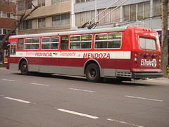Red trolley (Upper Uhs) Tags: city red cidade bus argentina argentine rojo trolley transport ciudad mendoza transporte argentinien cittá trole cuyo