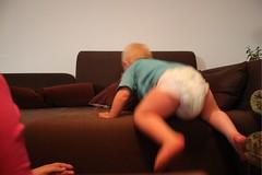 gusten klättrar i soffan2