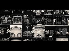 Antes de (Programa Corto) Tags: cemetery cementerio nicho laredo cantabria stoplookandlisten benjaminbiolay antesde ©programacorto programacorto bienavant